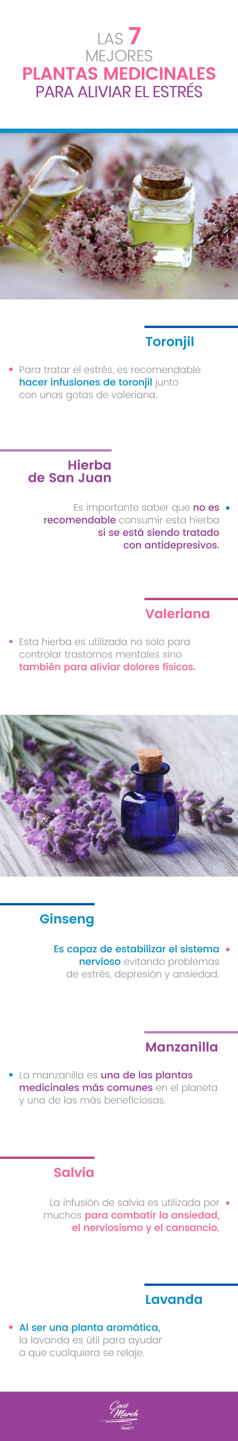 plantas-medicinales-para-el-estres