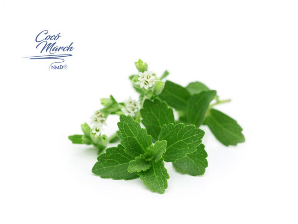 llega-al-mercado-una-stevia-transgenica-truvia