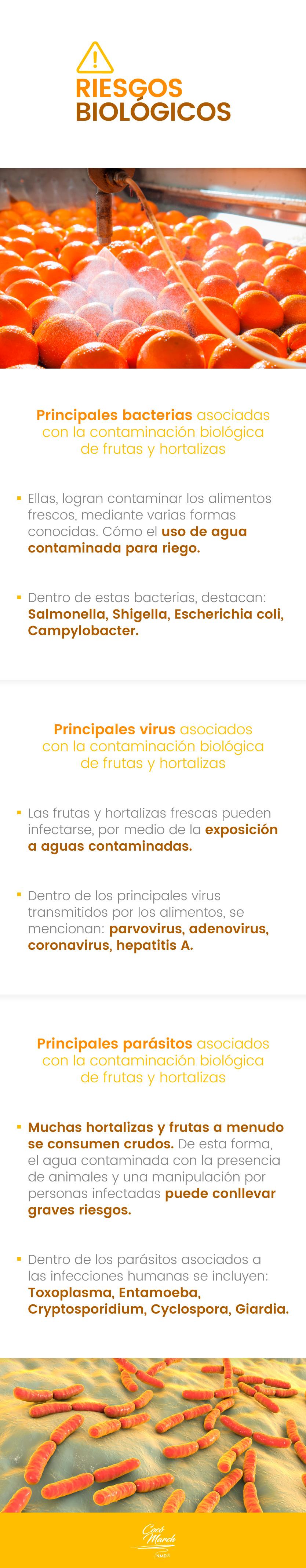 riesgos-biologicos-de-los-pesticidas