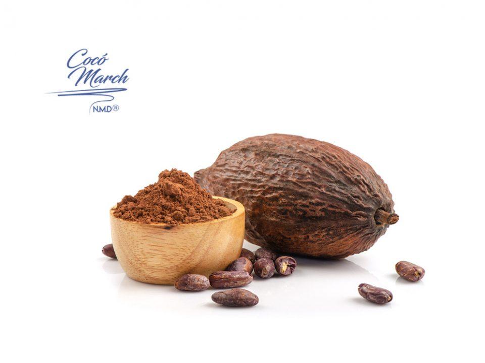 beneficios-del-cacao