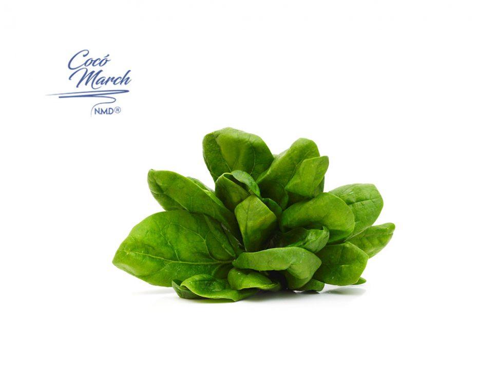 nutrientes-esenciales-para-el-covid-19