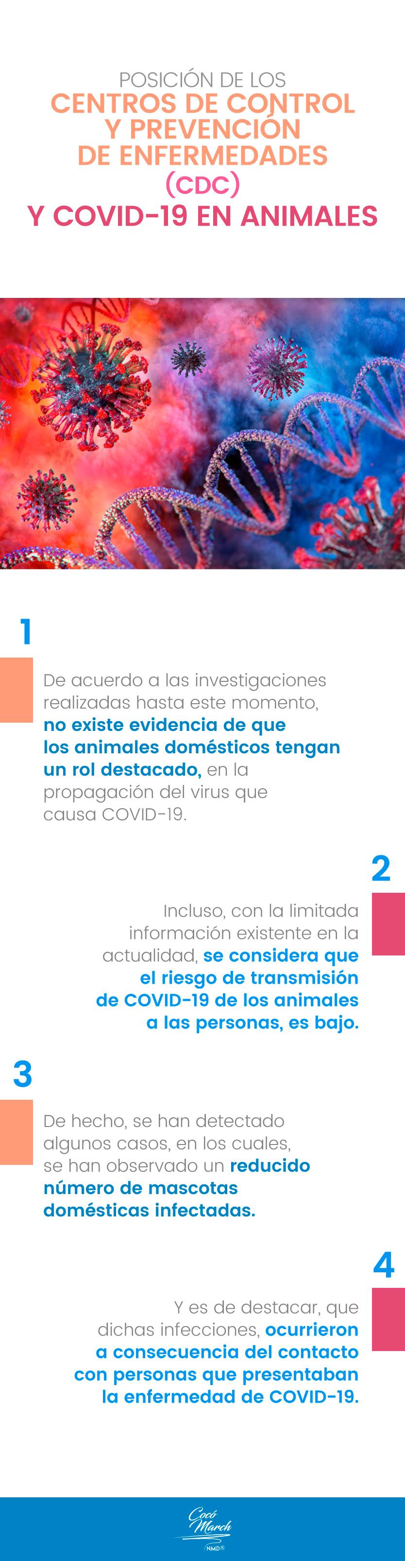 prevencion-del-covid-19-en-animales