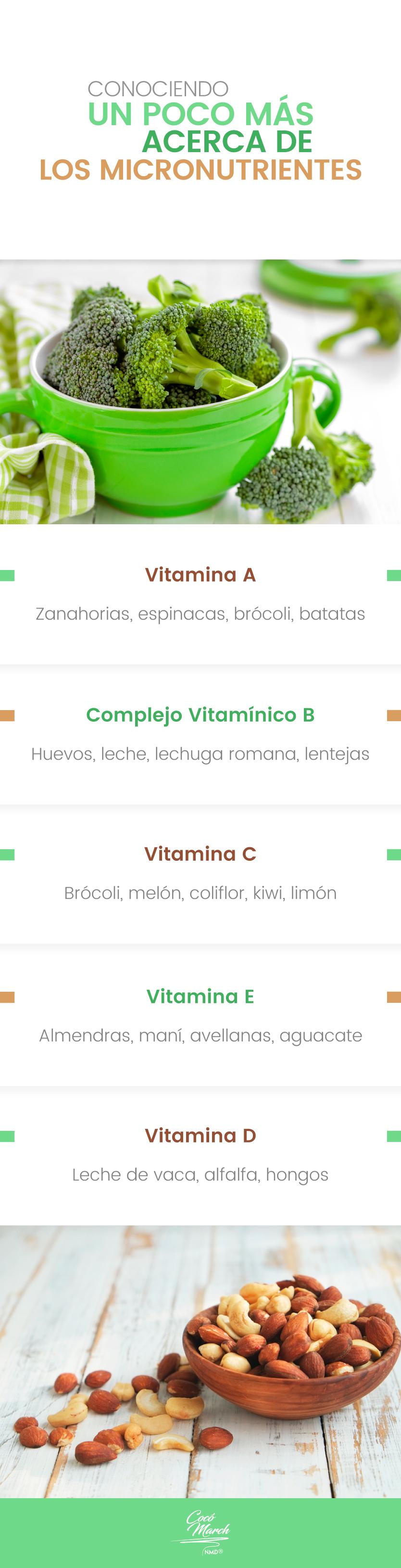 los-micronutrientes