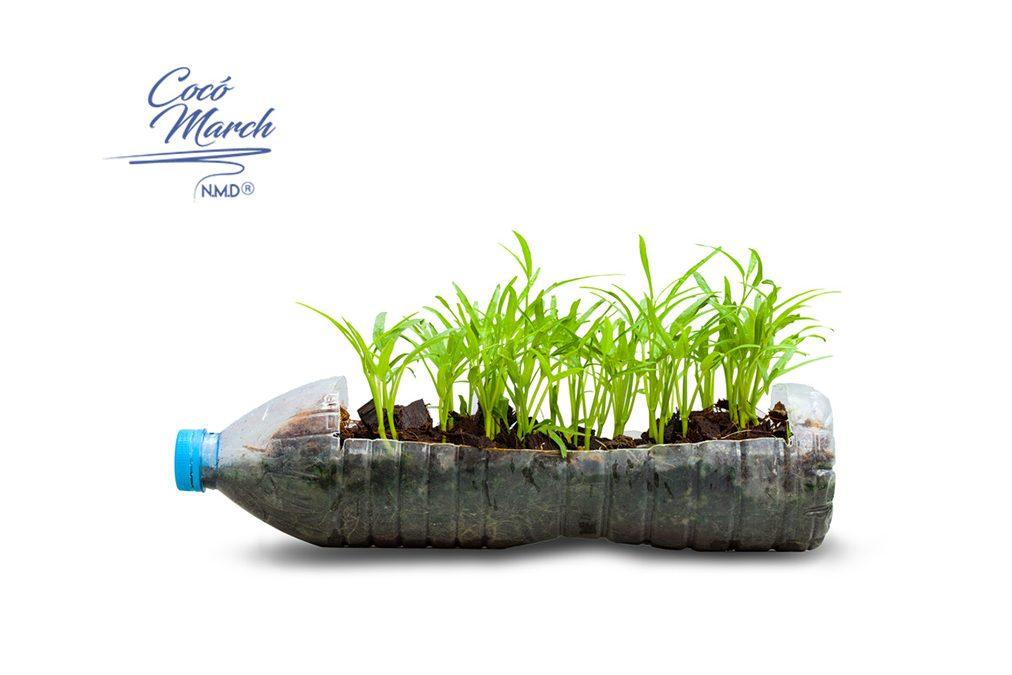 es-hora-de-empezar-a-cultivar-nuestros-alimentos