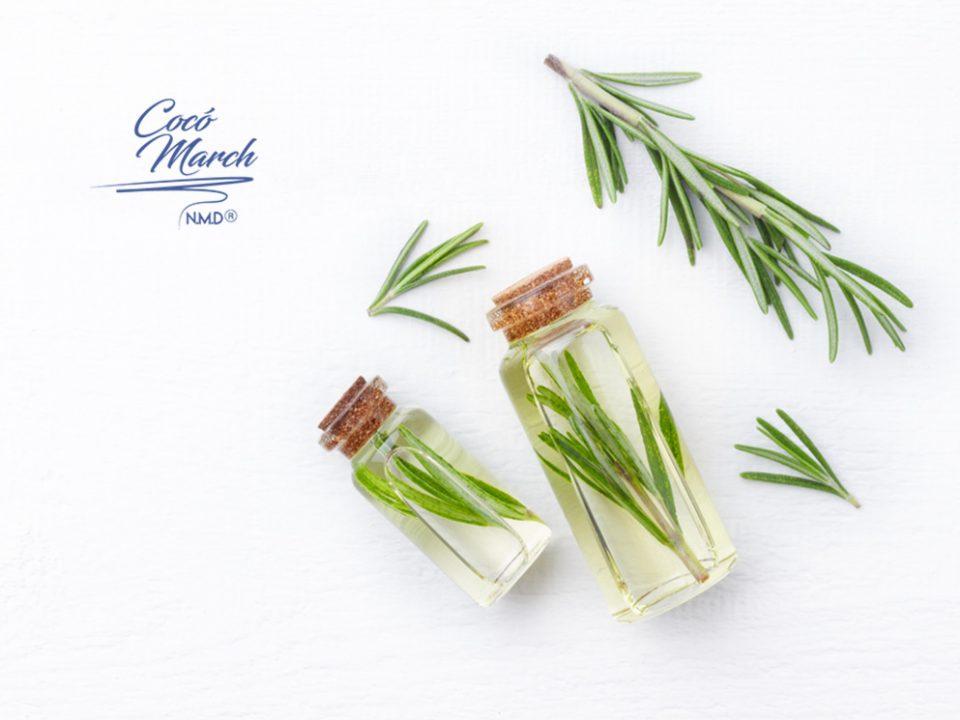 beneficios-del-aceite-esencial-de-romero