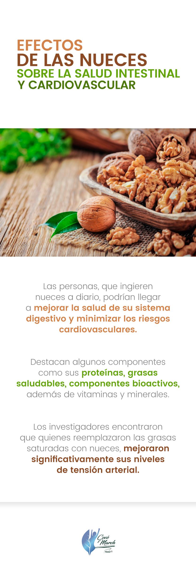 nueces-para-la-salud-intestinal-y-cardiovascular