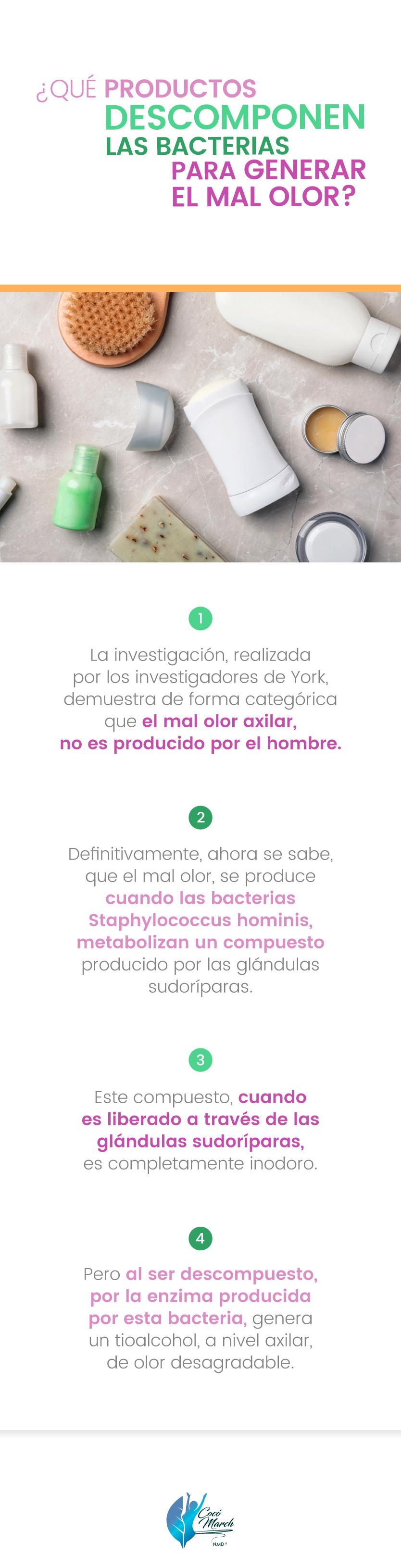 productos-que-descomponen-las-bacterias-para-generar-mal-olor
