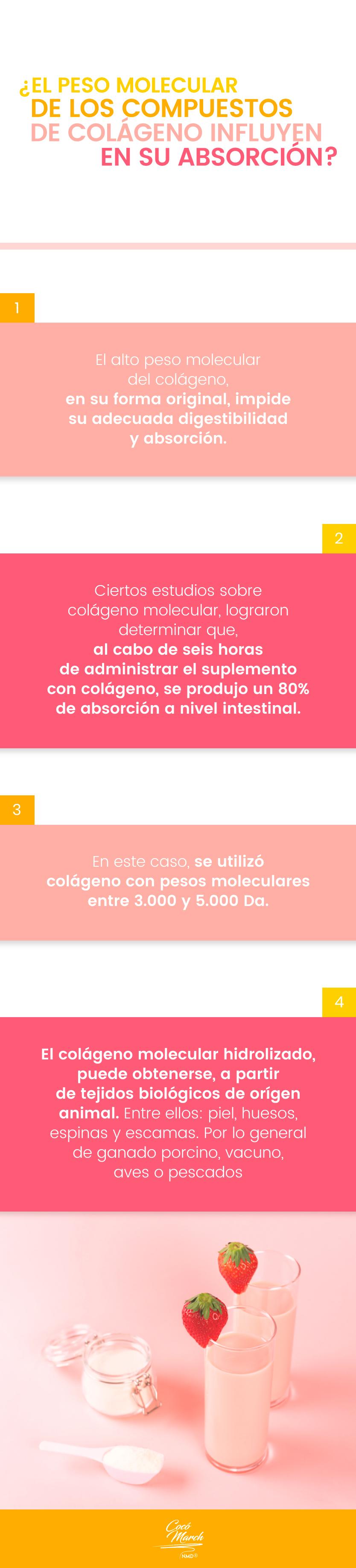 peso-molecular-de-los-compuestos-de-colageno-influyen-en-la-absorcion