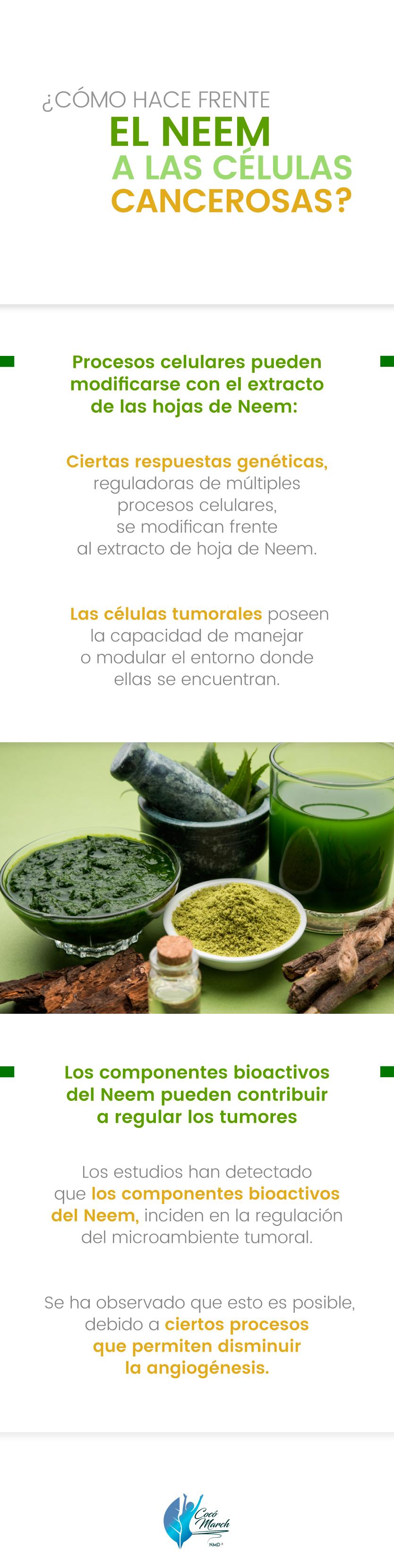 neem-y-celulas-cancerosas