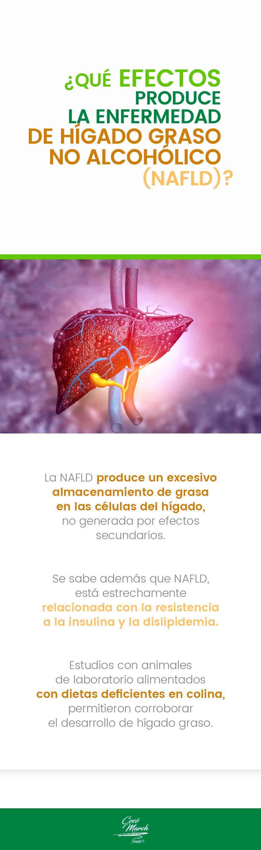 que-efectos-produce-la-enfermedad-de-higado-graso