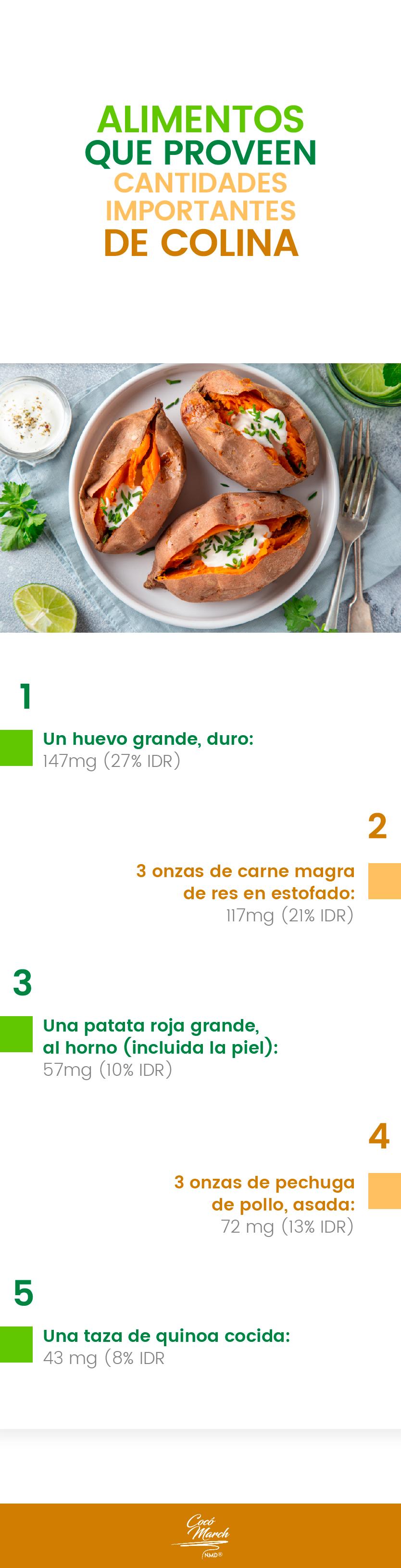 alimentos-que-proveen-cantidades-importantes-de-colina