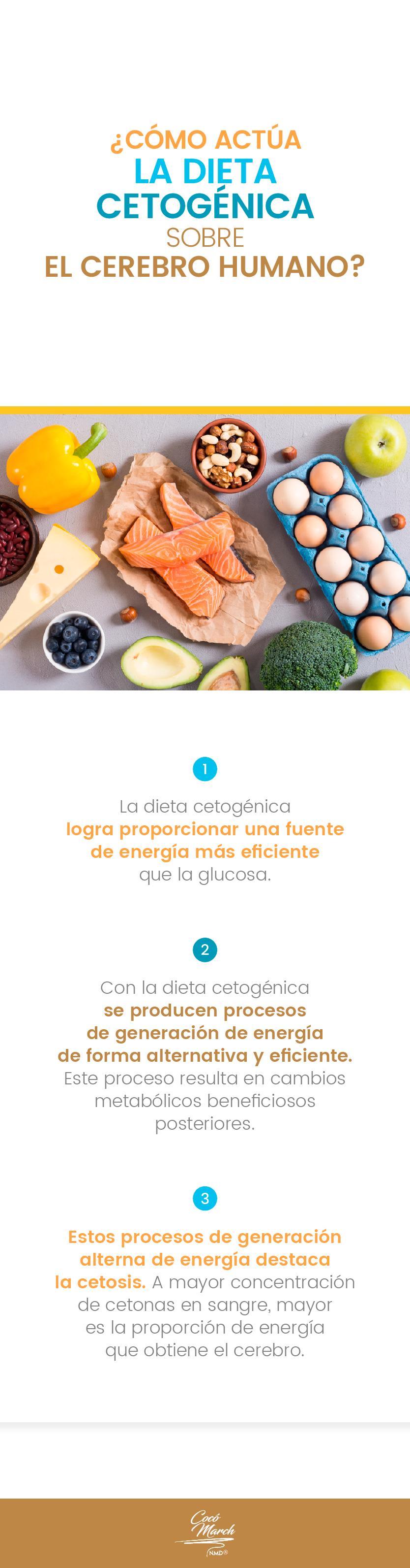 como-actua-la-dieta-cetogenica-sobre-el-cerebro