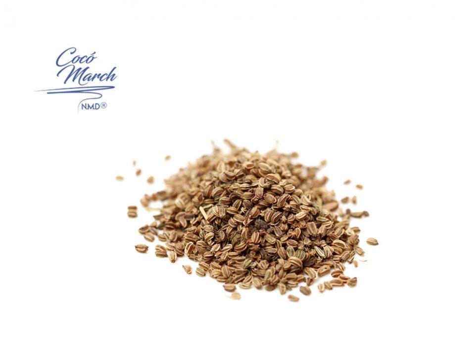 semilla-de-apio-regulan-la-presion-arterial