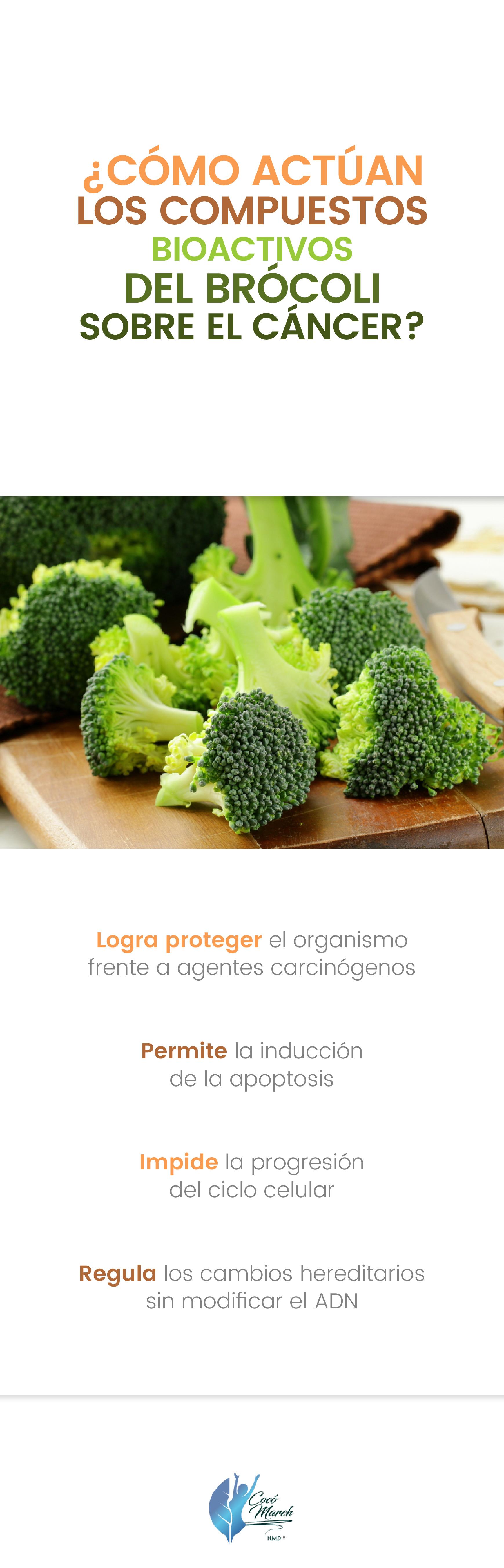 como-actuan-los-compuestos-bioactivos-del-brocoli-sobre-el-cancer