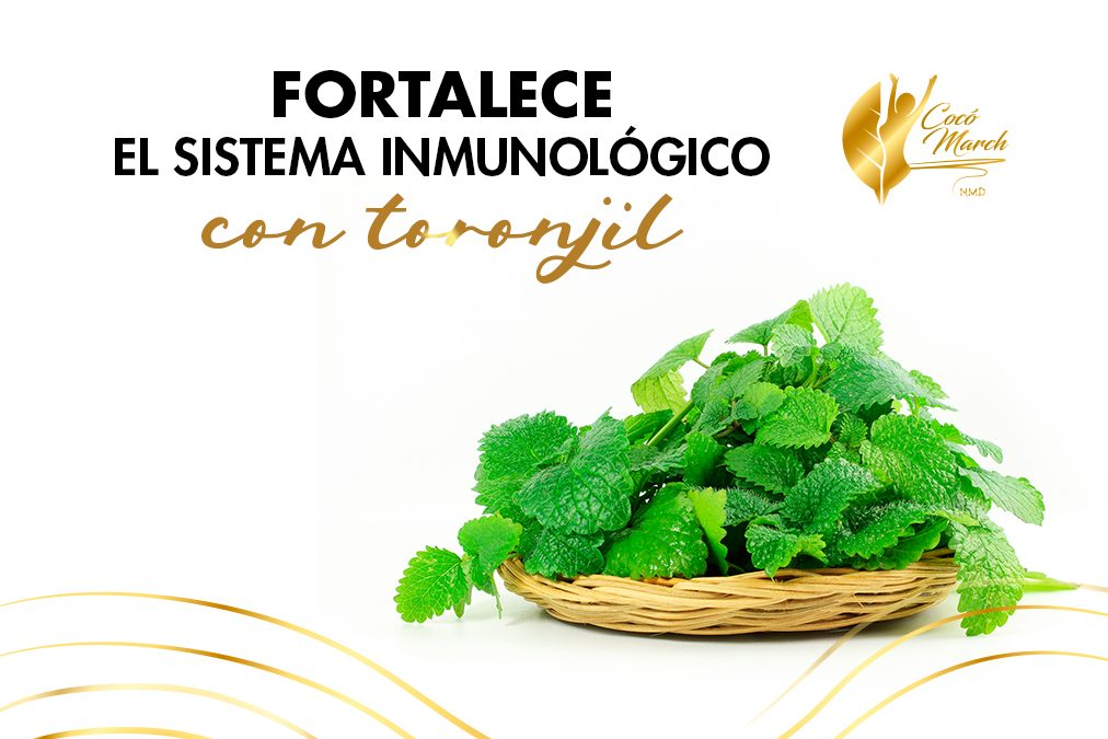 fortalece-sistema-inmune-con-toronjil