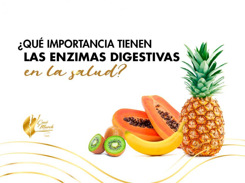 que-importancia-tienen-las-enzimas-digestivas-en-la-salud