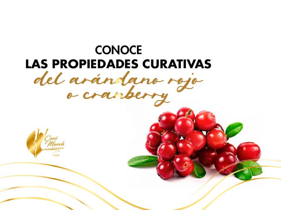 conoce-propiedades-curativas-del-arandano-rojo-o-cranberry